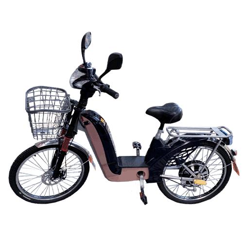 bike-eco-350w